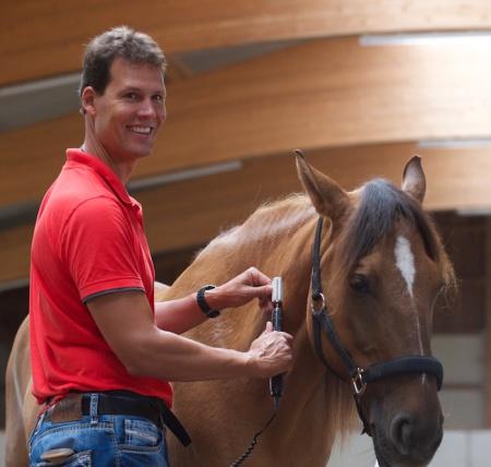 Laskowski Schiefe beim Pferd
